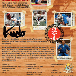 Kudo Seminar Flyer for Fusion Mixed Martial Arts